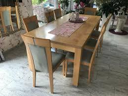 8 stühle eßzimmer ahorn massiv velours türkis