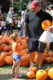 Houston Area Pumpkin Patches by You Might Try These Places To Find The Perfect Pumpkin Houston