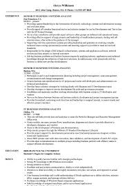 Download IT Business Systems Analyst Resume Sample As Image File