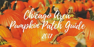 Pumpkin Farms In Channahon Illinois by Chicago Pumpkin Patch Guide 2017 Toddling Around Chicagoland