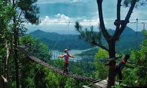 Jembatan Monyet Kalibiru Jogja
