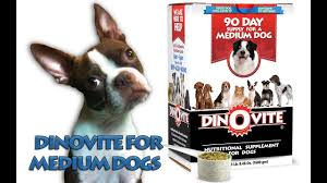 Dinovite For Medium Dogs Saks 10 Off Coupon Code Active Coupons Roamans Online Codes Bjorn Borg Baby Laz Fly Promo Online Discounts Dinovite For Small Dogs All Natural Flea Repellent Cats 100 Ct Tablets Away Restaurant Savings Coupons Garden Buffet Windsor Powder Up To 15 Lb Supromega 6 Pack 48 Oz Fish Oil Internet Warner Cable Sale Cnn August 2019 Us Diesel Parts Promo Codes Hotdeals