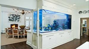 30 Aquarium Fish Tank Ideas Home Design - YouTube Creative Cheap Aquarium Decoration Ideas Home Design Planning Top Best Fish Tank Living Room Amazing Simple Of With In 30 Youtube Ding Table Renovation Beautiful Gallery Interior Feng Shui New Custom Bespoke Designer Tanks 40 2016 Emejing Good Coffee Tables For Making The Mural Wonderful Murals Walls Pics Photos