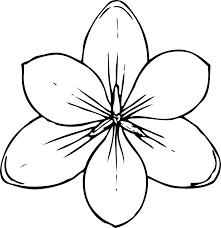 Book Black White Line Art Colouring Flowers Clipart Best