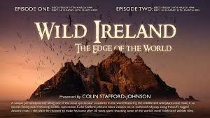 Wild Ireland The Edge Of World A Naturalists Pilgrimage