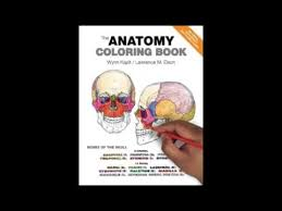 The Anatomy Coloring Book Pdf Download