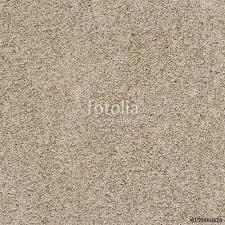 Soft Crete White Carpet Floor Texture