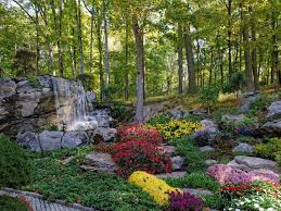 Beautiful Flower Garden Waterfall