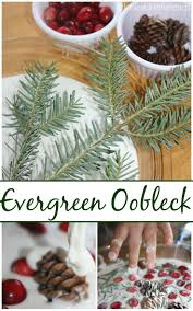 Christmas Tree Books For Preschoolers by 206 Best Christmas Play Ideas Images On Pinterest Christmas