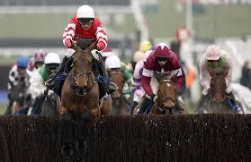 100 Massage Parlours In Cheltenham Racing Horse Racing Novice Coneygree Wins Gold Cup
