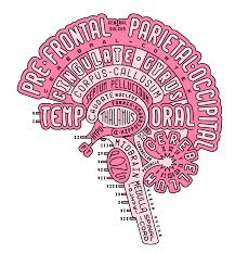 Get Your Brain Anatomy On With This Brilliant Typogram By Aaron Kuehn