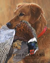 10 Best Hunting Dog Breeds Whether Its For Duck Pheasant Waterfowl Retrieval The Top Are Explored Here