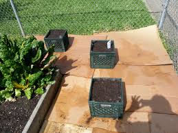 Milk Crate Planters Garden Bucket List