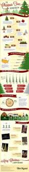 Best Kinds Of Christmas Trees by Best 25 Christmas Tree Farms Ideas On Pinterest Christmas Tree