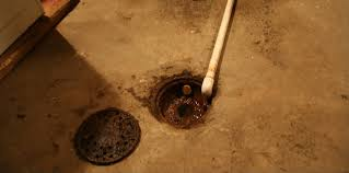 bold and modern basement floor drain trap sewer gas smelling