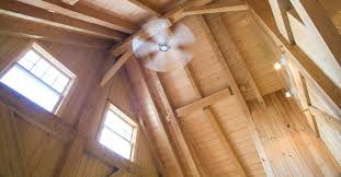 Squeaky Ceiling Fan Beat by Tips For Eliminating Ceiling Fan Noise