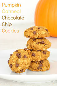 Pumpkin White Chocolate Chip Scones by Best 25 Healthy Pumpkin Cookies Ideas On Pinterest Gluten Free