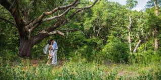 Jacksonville Arboretum & Gardens Weddings