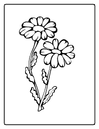 Popular Coloring Pages Flowers Cool Design Gallery Ideas