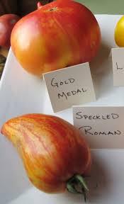 G M Pumpkin Patch Livermore Ca by 1322 Best Fruit U0026 Vegetable Images Images On Pinterest Garden
