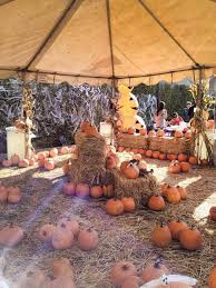 Pumpkin Patch San Jose 2015 by Realbayvoices 2015 October