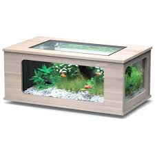 bon coin aquarium occasion le bon coin table cuisine le bon coin table cuisine