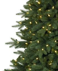 Kennedy Fir Narrow Christmas Tree