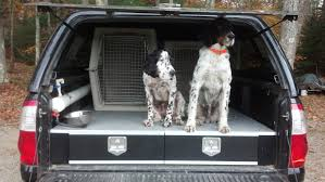 DIY Truck Storage: Part 1 - Pointing Dog