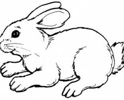 Pictures Of Bunnies To Color