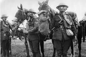Most Decorated Soldier Uk by Horses Wearing Gas Masks During Wwi British Cavalry Training