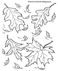 Autumn Falling Leaves Coloring Pages