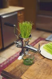 Juicer Bed Bath Beyond by Amazon Com Weston Manual Wheatgrass Juicer Stainless Steel Hand