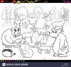 Black And White Cartoon Illustration Of Forest Scene With Wild Animal Characters Group For Coloring Book