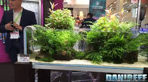 Gaia Italia And Aquascaping At Interzoo 2016 - UHD - 4K - YouTube Aquascaping Artist Oliver Knott Scapingaquarium Pinterest Schwimmende Stein Steine Im Aquarium By Knott Youtube Aquascapi Sequa Interzoo 2012 Feat Chris Lukhaup Live Part 3 The Island Aquascape Step Aquariology With At The Koelle Zoo Heidelberg New Project Photo Editor Online And Editor Made Teil 1 Inspiration Tips Tricks Love Aquascaping Octopus Aquarium Via Aquac1ubnet