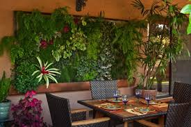 Living Art What Is A Vertical Wall Garden