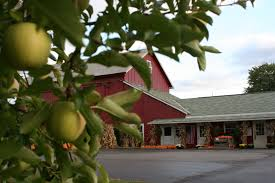 Images Of Apples, Apple Orchards, Pick Your Own Apples And ... Tennessee Smoky Mountains Seerville Apple Barn Apple Orchard Fall Family Fun And A Review On The New Mccallums Orchard Weddings Watercolor Sky Old Barns Orchards A Farm House And At Pine Tree Minnesota Aspetuck Valley Roadfood In North Georgia Bj Reece About Us Winery Pigeon Forgeapple Gloucestershire Uk Stock Photo Royalty The Cider Mill General Store Tn Our Picks For Southern Living Taggarts Page 2