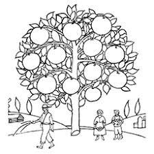 Free Printable Orange Tree Coloring Page