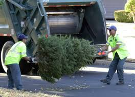 Baltimore County Christmas Tree Recycling 2015 by Waste Management Christmas Tree Collection Christmas Lights