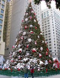 Elgin Il Christmas Tree Farm by Old Chicago Christmas Tree Jpg W U003d420 U0026h U003d543