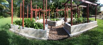 Get Ready for Fall Gardens in SWFL – Food and Thought
