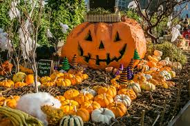 Pumpkin Patch Near Tulsa Ok by 7 Old Fashioned Fall Experiences Metrofamily Magazine October