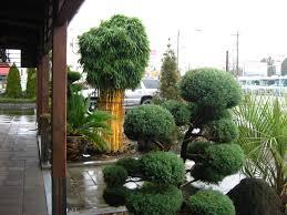 Garden Bamboo Home Design Ideas and
