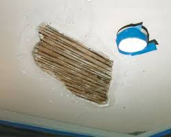 Popcorn Ceiling Patch Canada by How To Fix Plaster Ceilings Old House Restoration Products