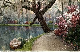 Azaleas at Magnolia Plantation and Gardens