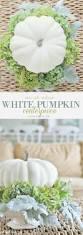 Pumpkin Moon Oak Park Il by Hydrangea And White Pumpkin Fall Centerpiece Centerpieces