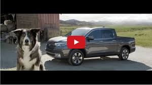 Woof! Woof! Singing Sheep, A Border Collie, A Classic Rock Song ... Pickup Truck Song At Geezerpalooza Youtube Ram Names A After Traditional American Folk 10 Best Songs Winslow Arizona Usa January 14 2017 Stock Photo 574043896 Transportation In Bangkok A Guide To Taxis Busses Trains And That Old Chevy 100 Years Of Thegentlemanracercom Red 1960s Intertional Pickup My Truck Pictures Pinterest Pick Up Truck Song Cover Jerry Jeff Walker Songthaew Bus Passenger Stop On Mahabandoola Rd 2018 Nissan Titan Usa Pandora Station Brings Country Classics The Drive