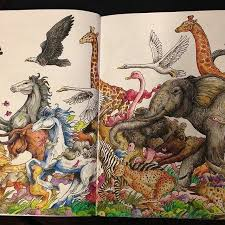Animorphia For The Best Coloring Books And Supplies Including