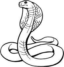 Snake Clip Art Black And White Snake Black And White Black And White Drawings Snake