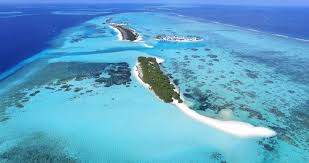 100 Rasdhoo Atoll Maldives Top 7 Dive Sites In The DeeperBluecom