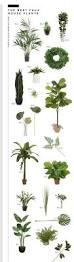 Best Plant For Bathroom by Best 25 Artificial Plants Ideas On Pinterest Artificial Outdoor